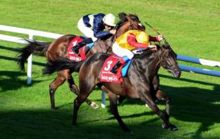 Snow Fairy Winning Irish Champion Stakes