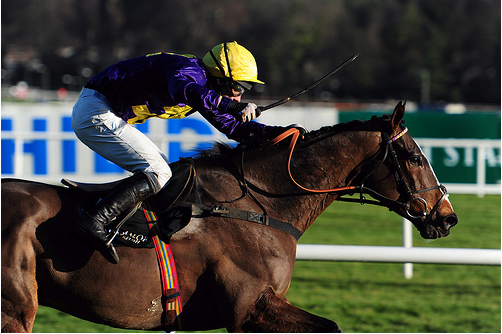 Hennessy Gold Cup – Tips and Preview – 3.00 Newbury