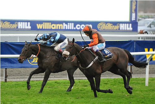 Long Run getting up to win the 2012 King George (photo by Meteorshoweryn)