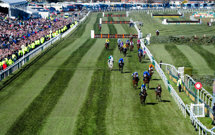 Aintree Grand National 2014 – Tips and Preview