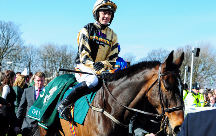2014 Punchestown Gold Cup – Tips and Preview – 5.30 Punchestown