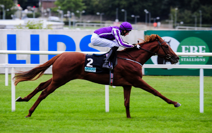 Australia Winning At Leopardstown (photo by meteorshoweryn)