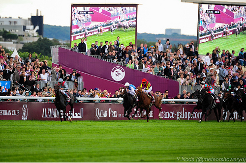 Treve winning the 2013 Arc (photo by meteorshoweryn)