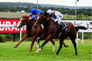 Toronado getting up late to win the Sussex Stakes.