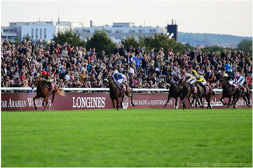 Orfevre looking sure to win the 2012 Arc