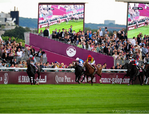 2014 Prix De L'Arc De Triomphe – Tips and Preview